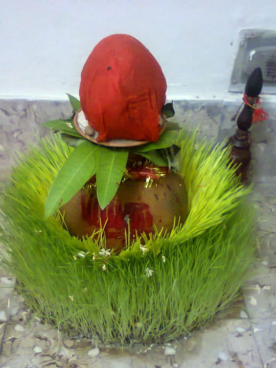 Barley Sowing Navratri