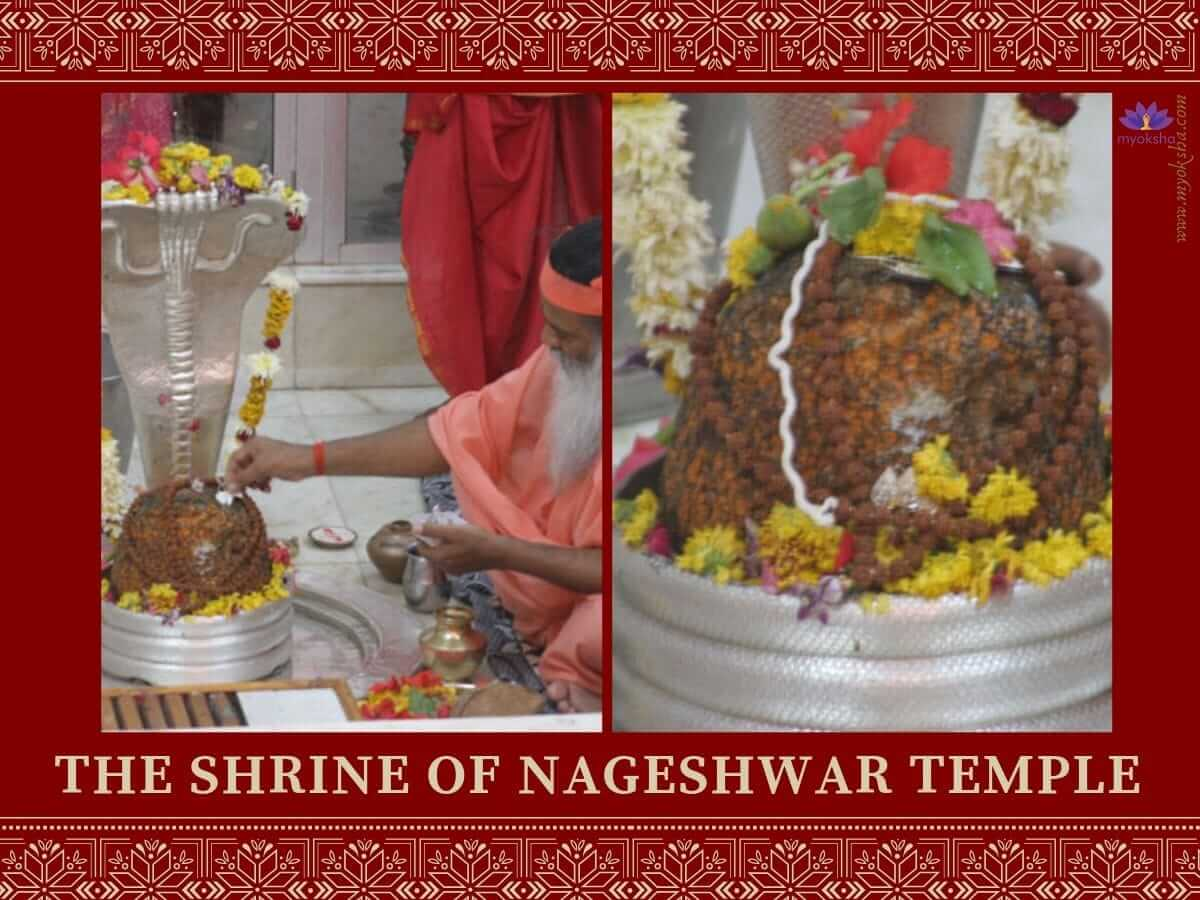 Shrine of Nageshwar Temple