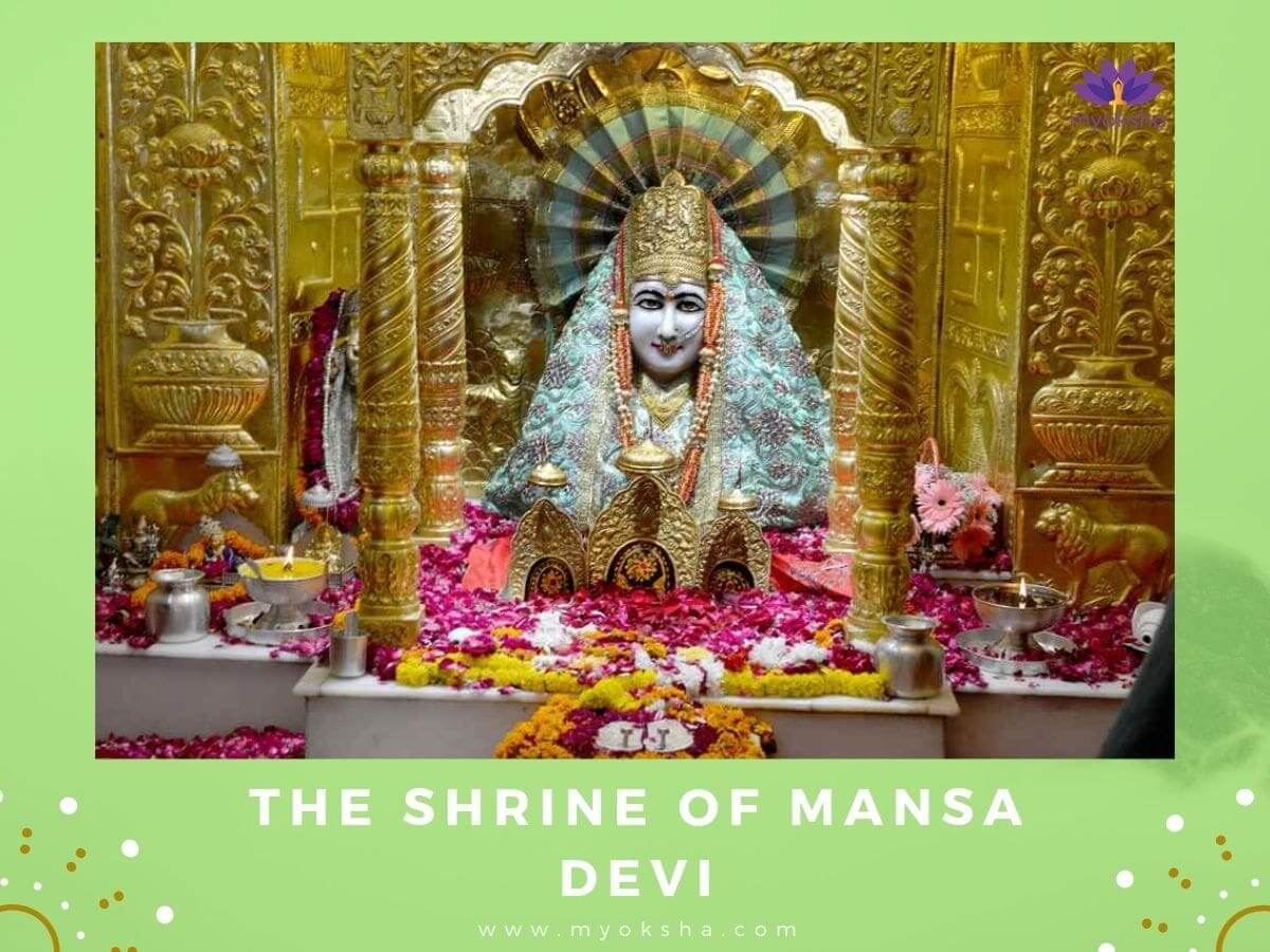 Shine of Mansa Devi