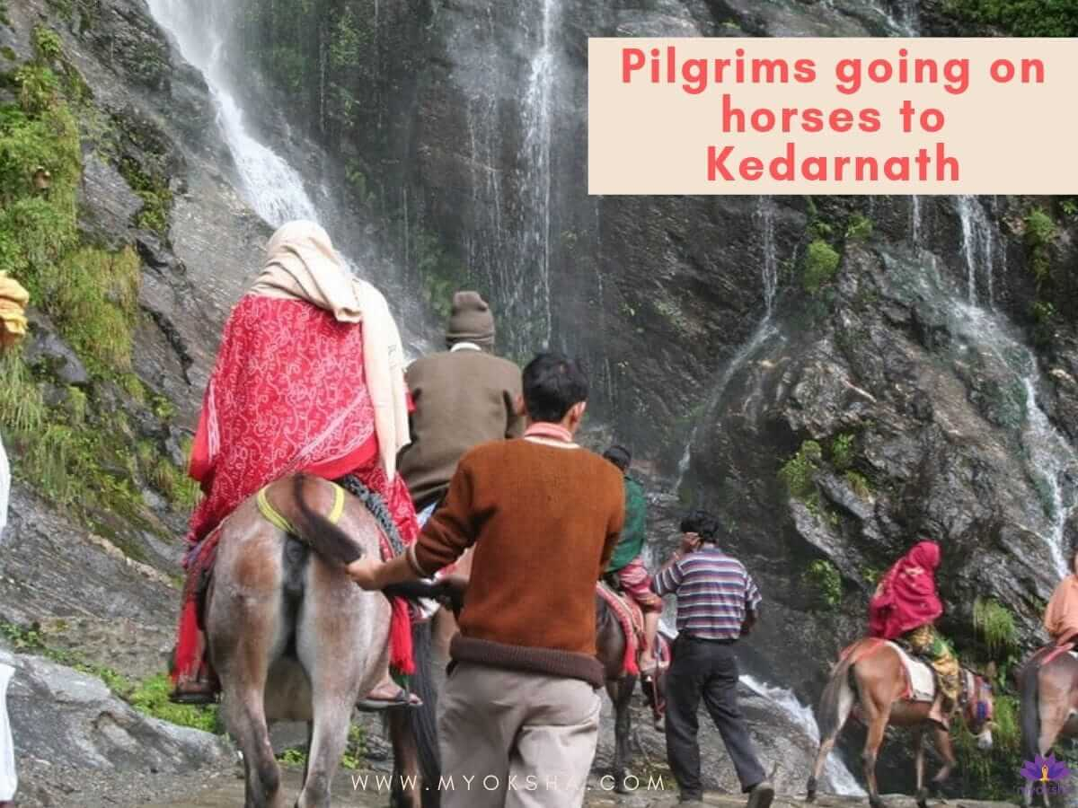 Horse facility  in Kedarnath Temple