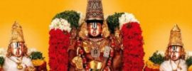 Kalyanotsavam Seva Newly Married Couples