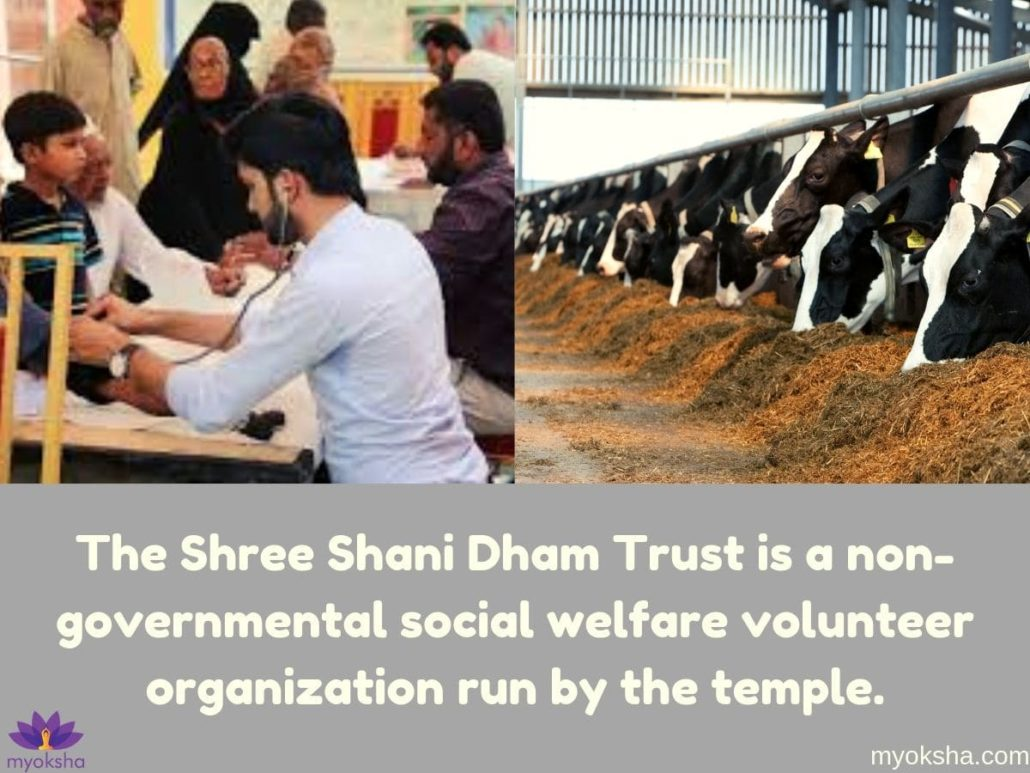 Shani Dham Activities