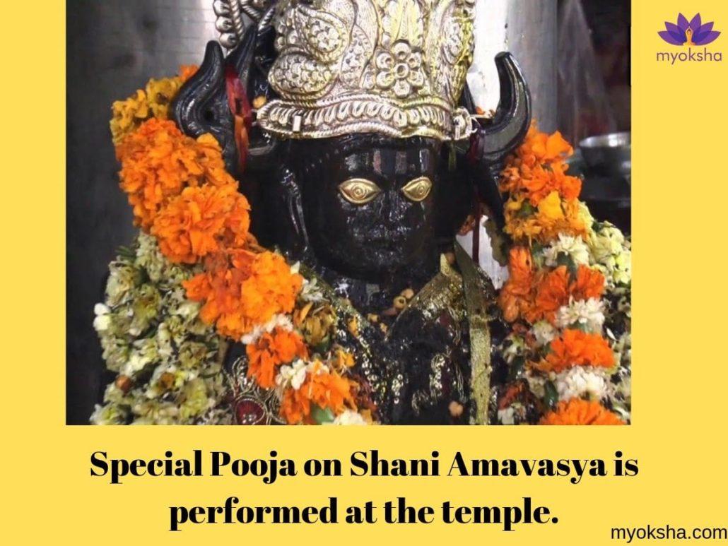 Shani Dham Festivals