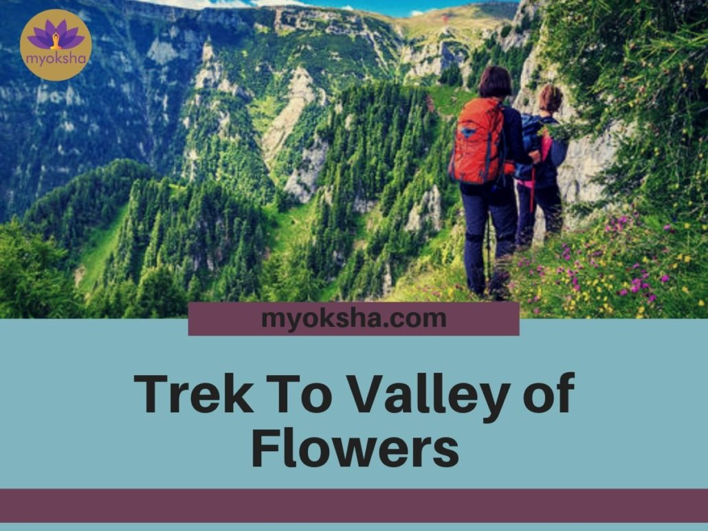 Reaching Valley of Flowers