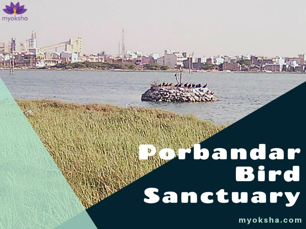 Porbandar Bird Sanctuary