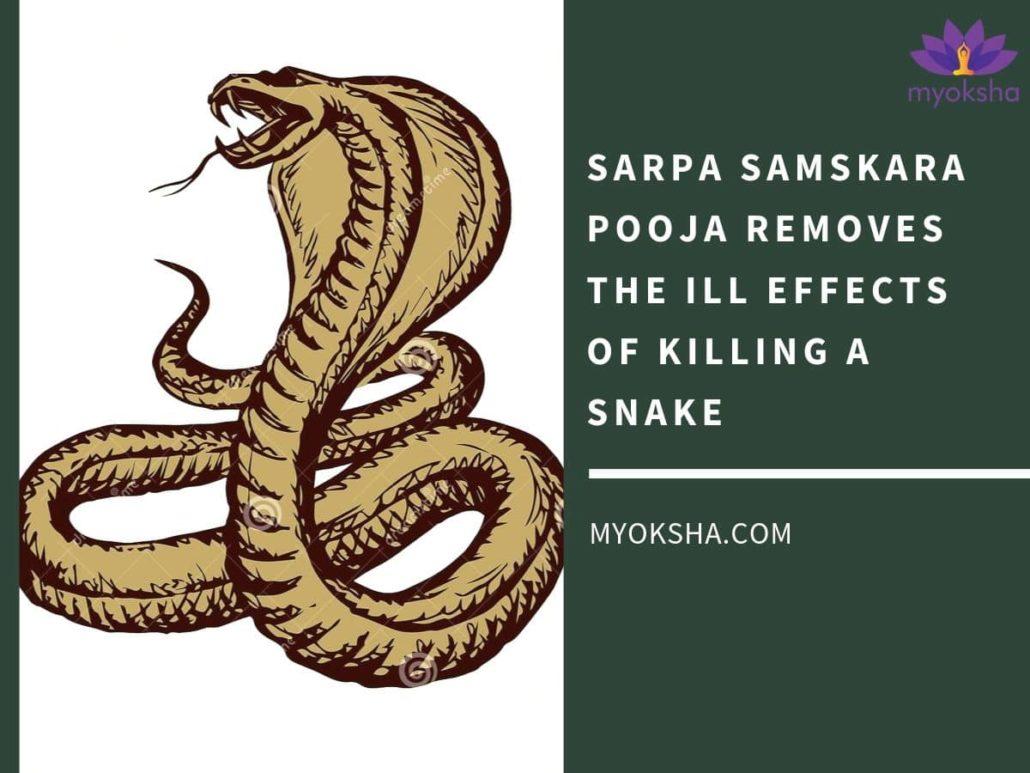 Sarpa Samskara Pooja - Benefits and Significance